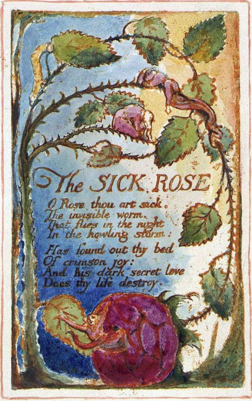 William Blake - The Sick Rose