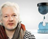 Why is the Guardian colluding in the persecution of Julian Assange? Wikileaks responds